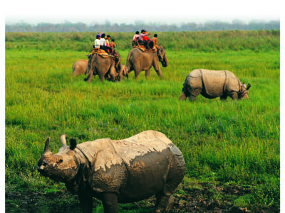 India: Culture & Wildlife of North East